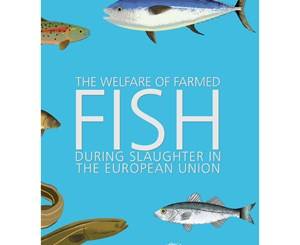 The Welfare of Farmed Fish During Slaughter in the EU